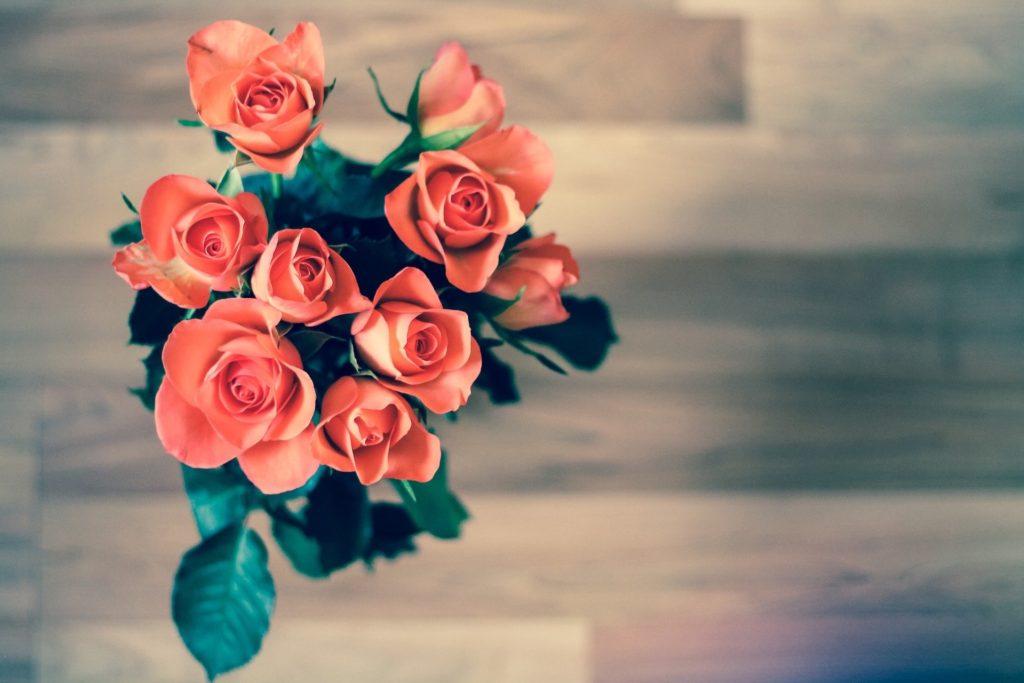 roses 690085 1920 min 1024x683 - Blog